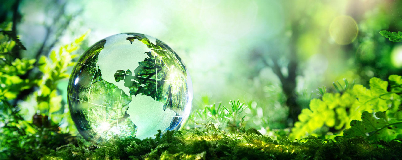 Natural Gas Vs Electricity Environment